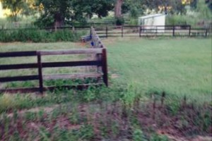 Photo #12: Farm Fence Work