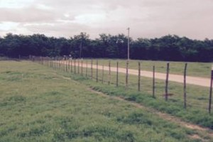 Photo #9: Farm Fence Work