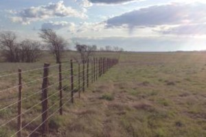 Photo #3: Farm Fence Work