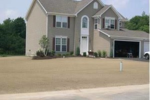 Photo #1: Yard Drainage Problems / Finish Grading / Bobcat Work / Yard Leveling