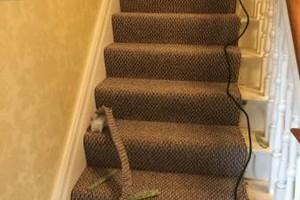 Photo #11: Carpet Detail Repairs/ Restreach