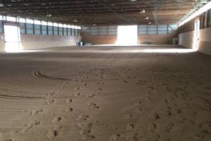 Photo #2: Beautiful equestrian facility. Horse Boarding