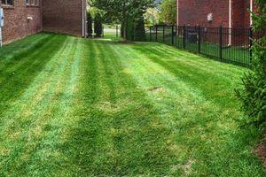 Photo #15: Pantoja Lawn Care