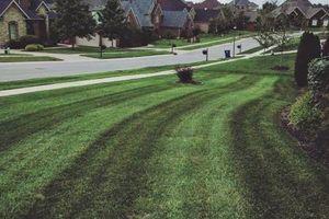 Photo #14: Pantoja Lawn Care