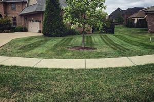 Photo #12: Pantoja Lawn Care