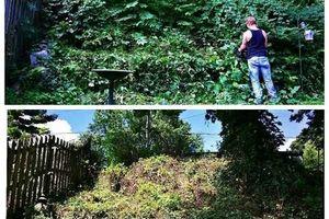 Photo #6: Pantoja Lawn Care