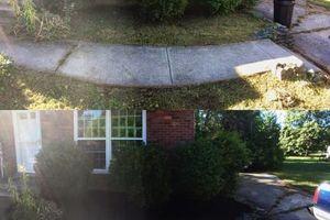 Photo #3: Pantoja Lawn Care
