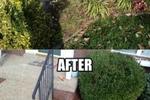 Photo #4: Quality Work! Reasponable Price for Pressure washing!