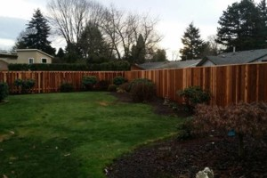 Photo #11: Alanmarc Construction. 6' Cedar Fence $17.00 A Foot