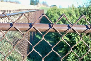Photo #6: Alanmarc Construction. 6' Cedar Fence $17.00 A Foot