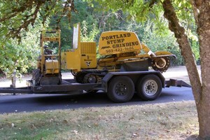 Photo #2: Portland Stump Grinding