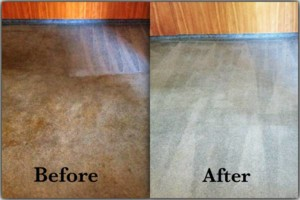 Photo #12: Tufts Carpet Cleaning! $99!