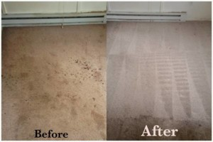 Photo #13: Tufts Carpet Cleaning! $99!