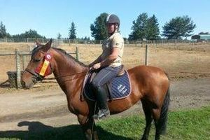 Photo #8: Horse training, lessons and boarding