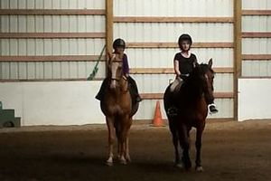 Photo #14: Horse training, lessons and boarding