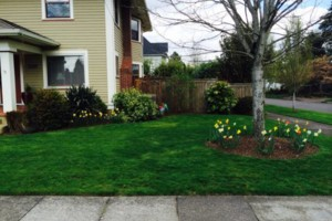 Photo #12: Oregon's superior Landscape & design. Lawn maintenance free...