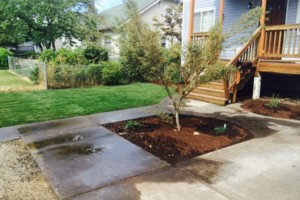 Photo #6: Oregon's superior Landscape & design. Lawn maintenance free...