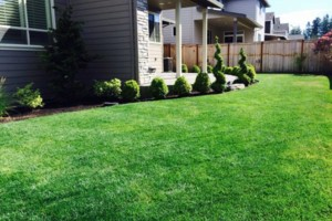 Photo #4: Oregon's superior Landscape & design. Lawn maintenance free...