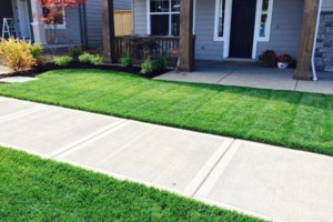 Photo #2: Oregon's superior Landscape & design. Lawn maintenance free...