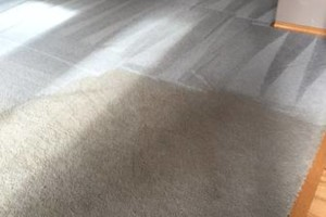 Photo #9: Aqua Zone Carpet & Upholstery Cleaning. Special 5 Areas $99.00 (up to 1200 sq ft.)