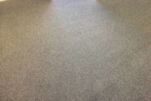 Photo #7: Aqua Zone Carpet & Upholstery Cleaning. Special 5 Areas $99.00 (up to 1200 sq ft.)