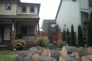Photo #3: JUHLIN'S TREE SERVICE