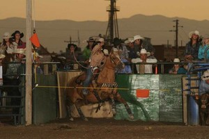 Photo #1: Riding/roping/daubing lessons