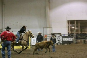 Photo #2: Riding/roping/daubing lessons