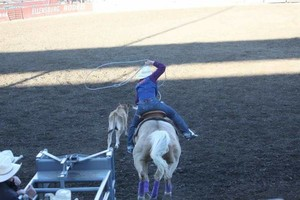 Photo #6: Riding/roping/daubing lessons