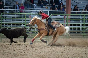 Photo #7: Riding/roping/daubing lessons