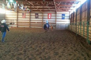 Photo #10: Riding/roping/daubing lessons