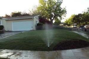 Photo #2: Lawn care (Edging, Mowing)