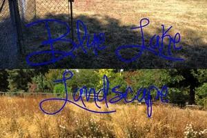 Photo #7: Blue Lake Landscaping