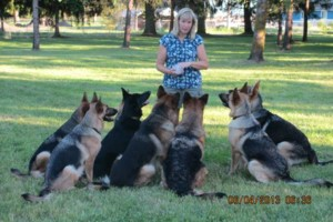 Photo #12: Natures Way Dog Training LLC Specialize in Behavioral/ Training Camp