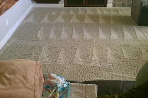 Photo #17: H o w e l l s Damn Good Carpet Cleaning - High Quality. TODAY ONLY: 50% OFF