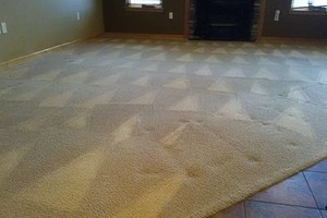 Photo #14: H o w e l l s Damn Good Carpet Cleaning - High Quality. TODAY ONLY: 50% OFF