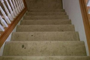 Photo #9: H o w e l l s Damn Good Carpet Cleaning - High Quality. TODAY ONLY: 50% OFF
