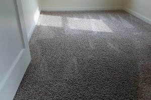 Photo #7: H o w e l l s Damn Good Carpet Cleaning - High Quality. TODAY ONLY: 50% OFF