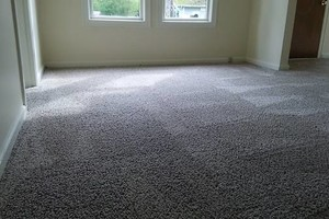 Photo #4: H o w e l l s Damn Good Carpet Cleaning - High Quality. TODAY ONLY: 50% OFF