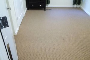 Photo #1: H o w e l l s Damn Good Carpet Cleaning - High Quality. TODAY ONLY: 50% OFF