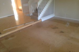Photo #10: Summit Design LLC - building, remodeling, and repairing