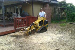 Photo #1: Reasonable Stump Grinding starts at $75.00