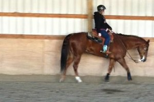 Photo #2: Horse Riding Lessons - Indoor Arena! Amethyst Performance Horses