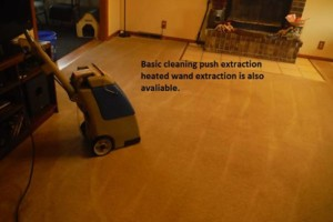 Photo #2: Pro plus cleaning and solutions. Carpet cleaning. Low rates!