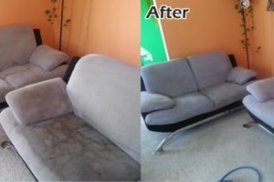 Photo #4: Professional Wonago Carpet Cleaning at Reasonable Rates!
