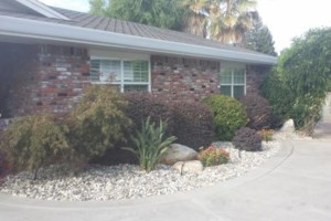 Photo #10: JDB's Custom Landscaper - Yard Clean up, Hauling, Waste Removal