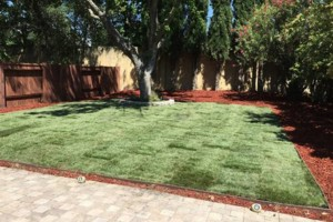Photo #8: JDB's Custom Landscaper - Yard Clean up, Hauling, Waste Removal