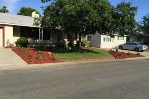 Photo #7: JDB's Custom Landscaper - Yard Clean up, Hauling, Waste Removal
