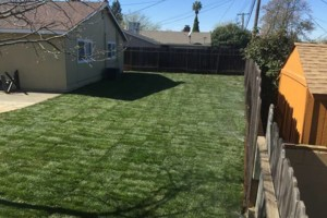 Photo #6: JDB's Custom Landscaper - Yard Clean up, Hauling, Waste Removal