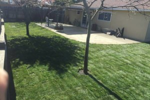 Photo #5: JDB's Custom Landscaper - Yard Clean up, Hauling, Waste Removal